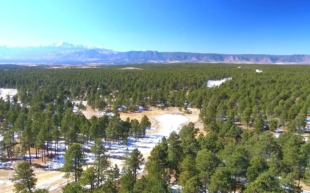 Aerial Video of Flying Horse North in Black Forest